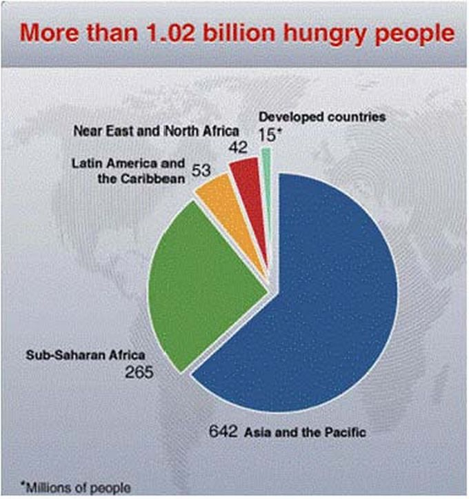 world hunger and poverty essay workplace armani gq world hunger and poverty essay